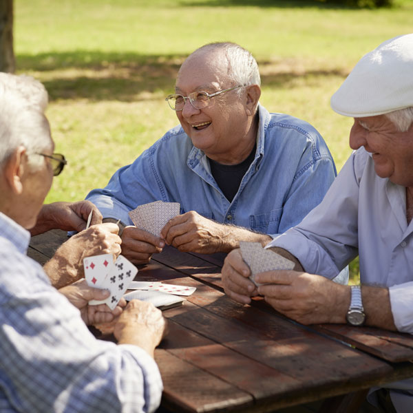 Men Playing Cards in the Park